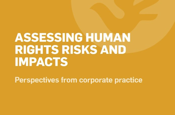 Advanced-Practitioners_Assessing-HR-Risks-and-Impacts_cover.jpg